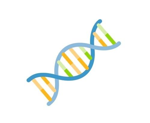 CUTANA™ E. coli Spike-in DNA