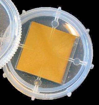 SPRchip™ Sensor Chips for SPR