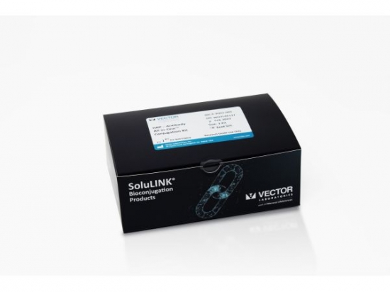 HRP–Antibody All-in-One™ Conjugation Kit